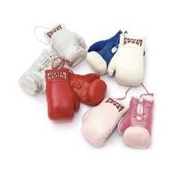 Paffen Sport Mini-Boxhandschuhe