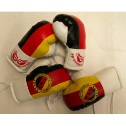 "Paffen Sport Miniboxhandschuhe ""Deutschland"""