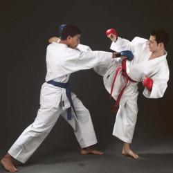 Karateanzug TOKAIDO KUMITE MASTER - mit WKF-Zulassung